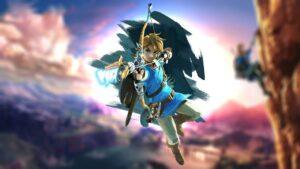 The-Legend-of-Zelda-Wii-U-Natura-NintendOn