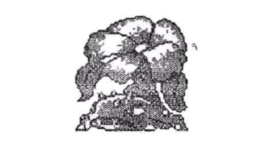 Ivysaur-original2-NintendOn
